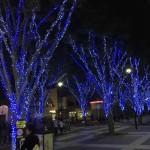 光の森の点灯式イベント