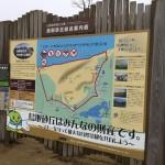 行政視察 3日目 鳥取砂丘