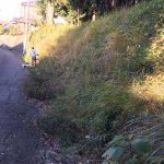 鹿島神社の草刈りと野立て看板